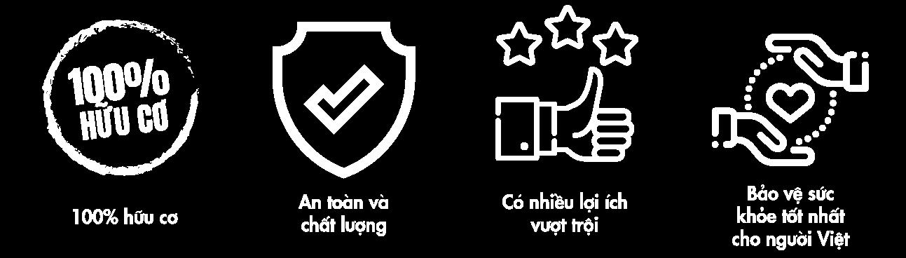 Banner-AO-4.jpg