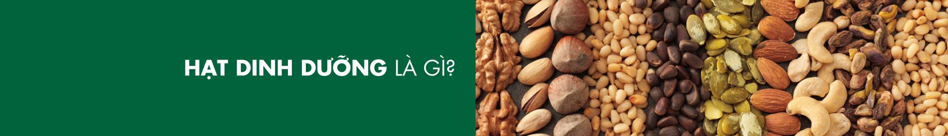 Banner-Nut1.2jpg