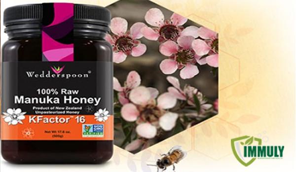 Có phải mật ong Manuka có thể chữa được bách bệnh?